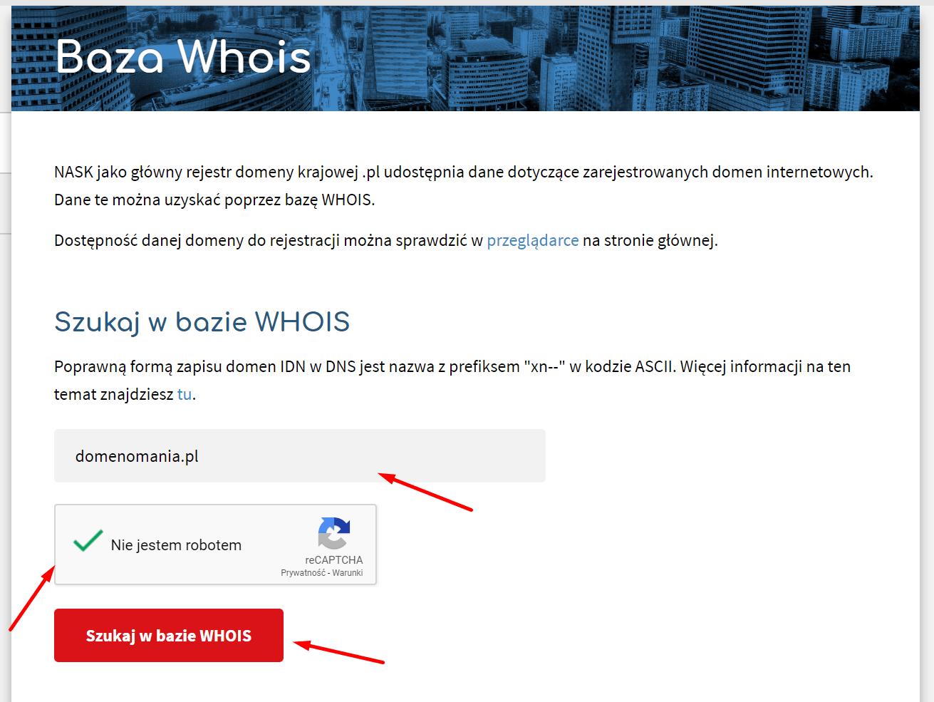 Jak znaleźć w bazie WHOIS właściciela domeny?