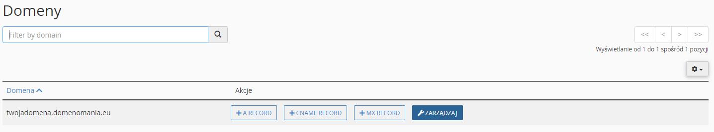 Kliknij przycisk: Zarządzaj przy wybranej domenie.