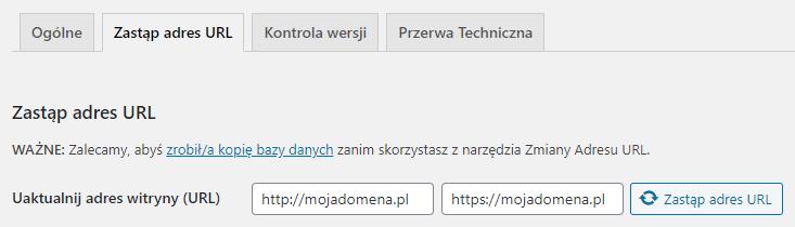 W przedstawionym polu wpisz poprawną nazwę domeny internetowej witryny