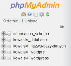 Lista baz danych utworzonych na serwerze