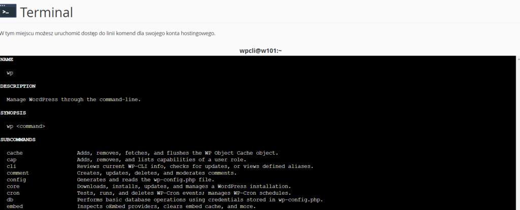 Dostępne komendy WP-CLI w konsoli hostingu WordPress