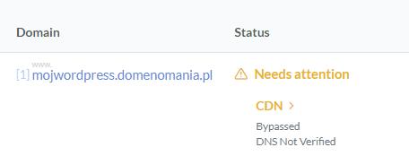 Jak przebiega proces weryfikacji domeny dla CDN QUIC.cloud?